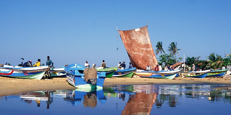 Fishing Boats in Negombo Beach