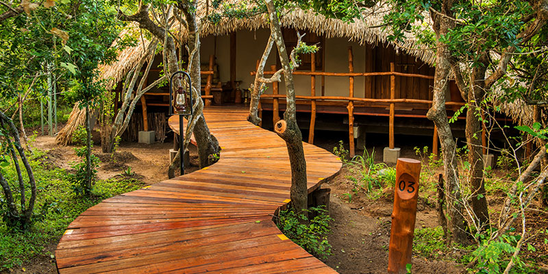 Luxury Huts in Yala Sri Lanka