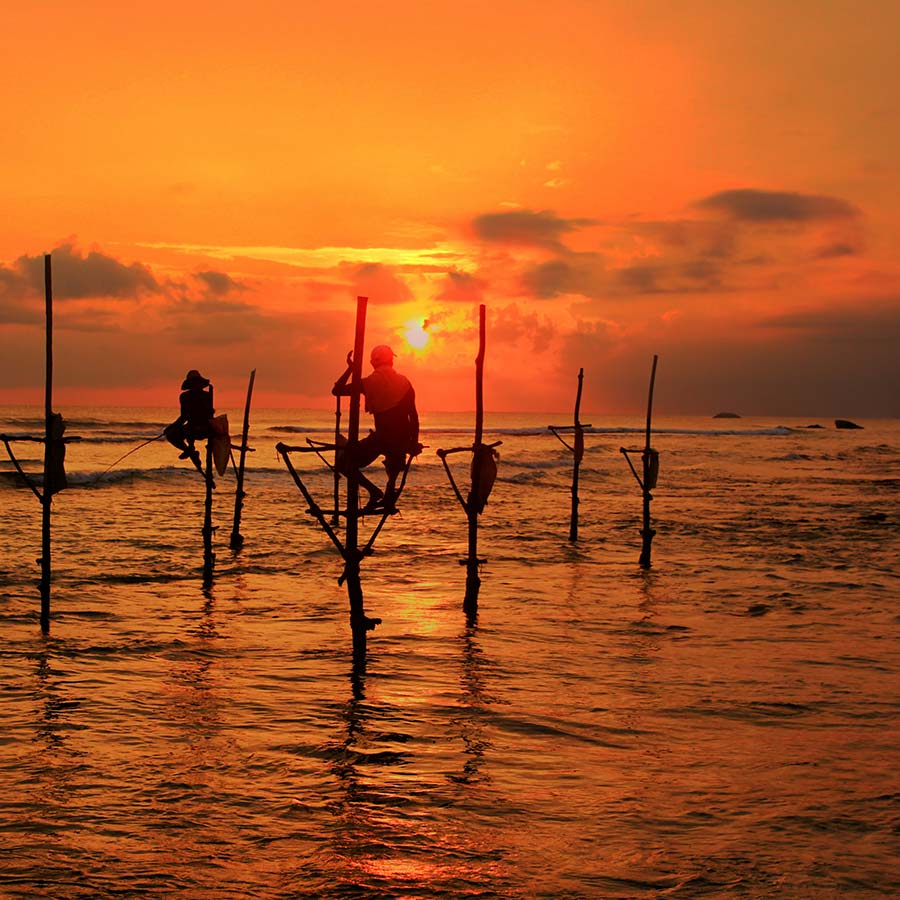 Stilt Fishing in Ahangama
