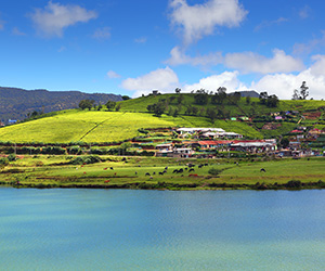 View of a Lake in Nuwara Eliya