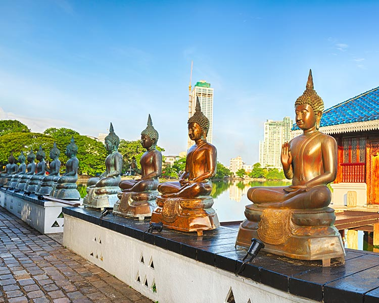 Buddha Statues in Colombo